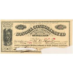Rare Bodie Mining Stock Certificate: Sonora Consolidated