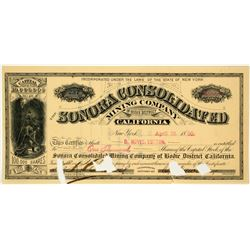 Sonora Consolidated Mining Company Stock Certificate
