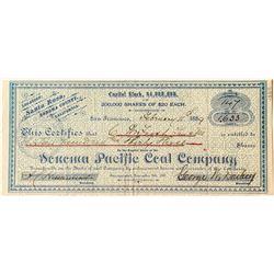 Sonoma Pacific Coal Company Stock Certificate