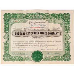Packard Extension Mines Co. Stock Certificate
