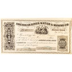 American River Water & Mining Company (Dotons Bar) Stock Certificate