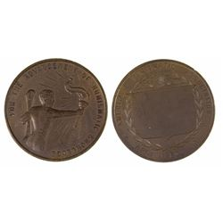 ANA Bronze Medal for Authors