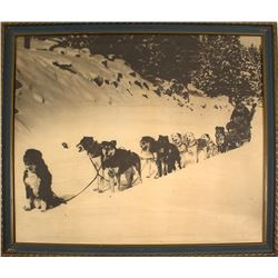 Probable Photograph of Truckee Dog Sled Race, c1920's
