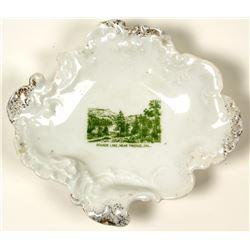 Truckee, Donner Lake Souvenir Plate