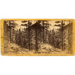 Bakerville, Colorado Territory Stereoview