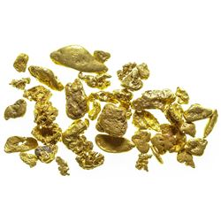 Downieville Gold Nuggets II