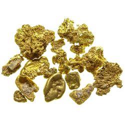Downieville Gold Nuggets V