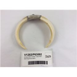 Antique Set of Boar Tusks With Sterling Silver Band