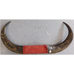 Mounted Pair of Water Buffalo Horns w/Helm COA