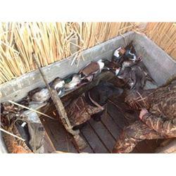 2 Hunters 1 Hunt, Utah Duck Hunt at Newstate Duck Club