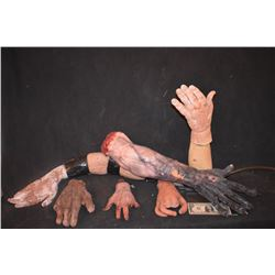 ARMS AND HANDS MISC SEVERED LIMB LOT