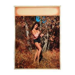 "Pinup Calendar Original Salesman's Sample Forest Beauty Litho ""Woodland Nymph"" 1959"