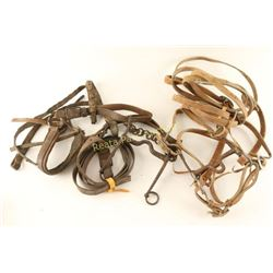 Collection of 2 Bridles