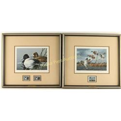 Lot of 2 Fine Art Waterfowl Prints with Stamps