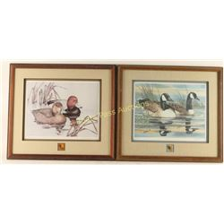 Lot of 2 Fine Art Waterfowl Prints with Pins