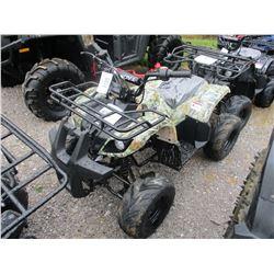 TAO 120 ATV VIN/SN:H1007619