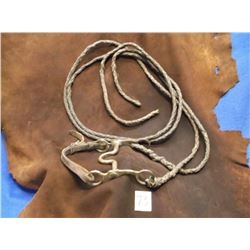 Marked Kelly Silver Overlaid Bit, High Port, Braided Leather Reins