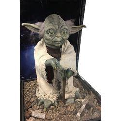 Star Wars Yoda Limited Edition Display