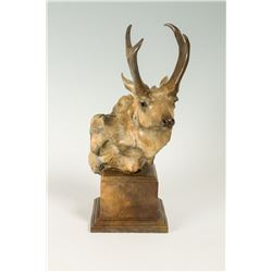 Sherry Sander, bronze