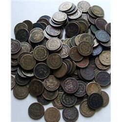 Lot of 100 Indian Head Pennies