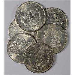 (6) Random Date BU Morgan Dollars-No 21s