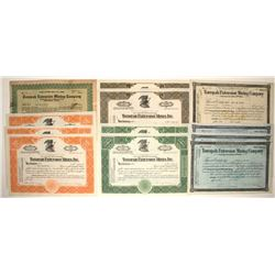 Tonopah Extension Mining Company stock collection