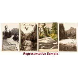 Lake Tahoe River Photo Postcards