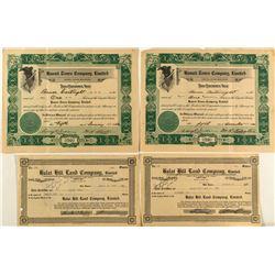 Hawaiian Stock Certificates (4)