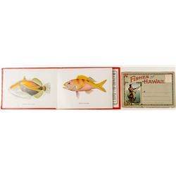 Images of Hawaiian Fishes