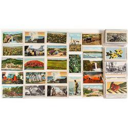 World War 2 Period Hawaiian Postcards