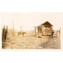 25 Ranch Views near Battle Mountain