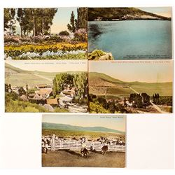 Schoer's Ranch House Postcards