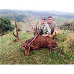 7-Day Rusa Deer Hunt for One Hunter and One Non-Hunter on Mauritius Island Near Southeast Africa - I