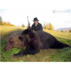 7-Day Armur Brown Bear Hunt for One Hunter in Khabarovsk, Russia - Includes Trophy Fee