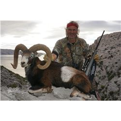 5-Day European Mouflon Ram Hunt for One Hunter in Croatia - Includes Trophy Fee