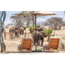 4-Day Luxury Photo-Safari for Two in Tanzania