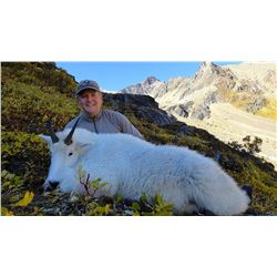 10-Day Mountain Goat Hunt for One Hunter in British Columbia - Includes Trophy Fee