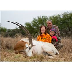 3-Day Scimitar Horned Oryx, Blackbuck and Wildebeest Hunt for One Hunter and One Non-Hunter in Texas
