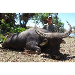 6-Day Water Buffalo Hunt for One Hunter in Australia - Includes Trophy Fee