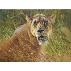 """Lioness: Lake Nakura"" - Amazing Original Oil Portrait by Renowned British Born Wildlife Artist Tony"