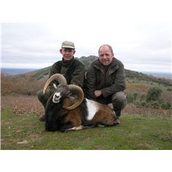4-Day Mouflon OR Fallow Deer Hunt for One Hunter and One Non-Hunter in Spain - Includes Trophy Fee