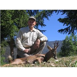 4-Day Roe Deer Hunt for Two Hunters and Two Non-Hunters in Spain - Includes Trophy Fees and 3-Day To