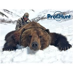 9-Day Kamchatka Brown Bear Hunt for One Hunter in  Russia - Includes Trophy Fee