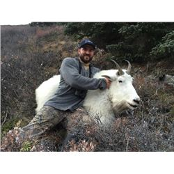 7-day British Columbia Mountain Goat Hunt for One Hunter
