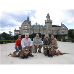 5-day Spain with Choice of Species Hunt for Two Hunters and Two Observers