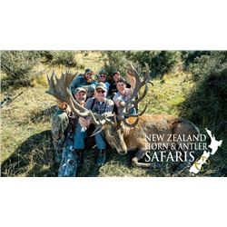 5-day New Zealand Red Deer up to 500 SCI for One Hunter and One Observer