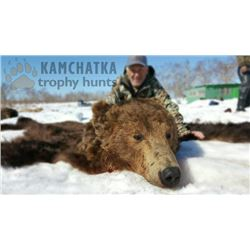 8-day Kamchatka Brown Bear Hunt for One Hunter