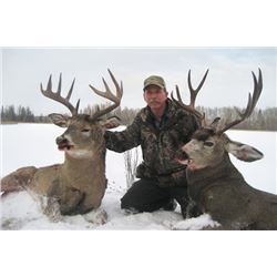 6-day Alberta Rocky Mountain Mule Deer and White-tailed Deer Hunt for One Hunter