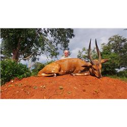6-day Uganda Kob and Nile Bushbuck Hunt for One Hunter and One Observer