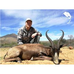 7-day South Africa Plains Game Hunt for One Hunter and One Observer